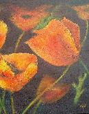 callifornia poppies no,3