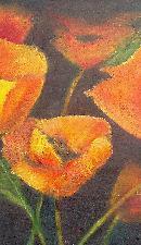 callifornia poppies no.4